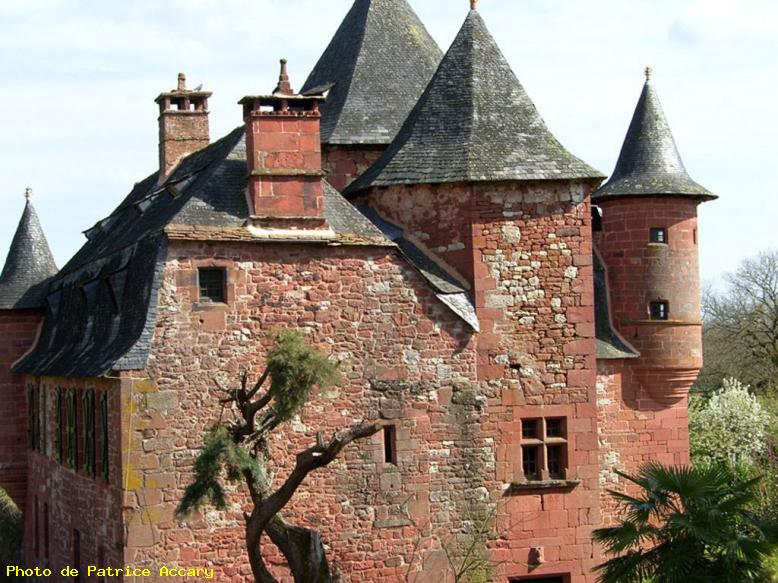ZOOM : Castel de vassinac - Collonges