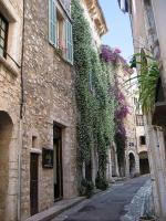 Façades fleuries (4) - Saint Paul de Vence