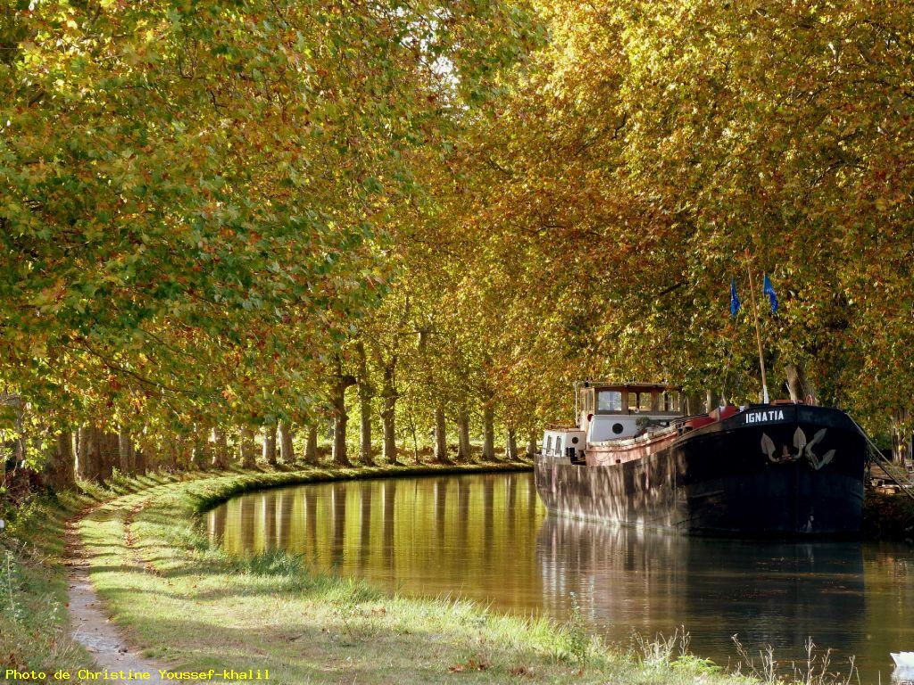 Canal du midi en automne quarante photo grand format for La pelouse interdite toulouse
