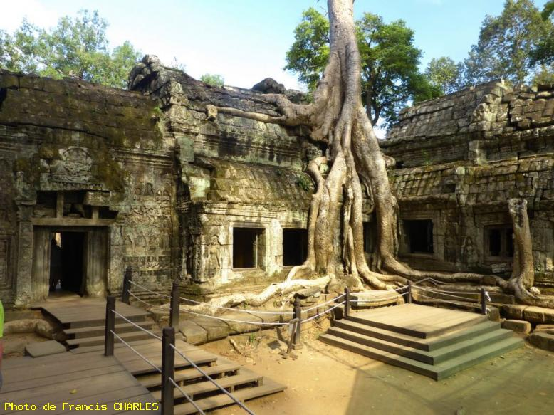 ZOOM : Temple ta prohm envahi par la jungle - Angkor