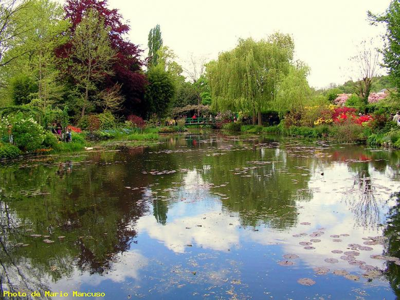 ZOOM : Le point d'eau de claude monnet - Giverny